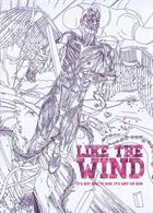 Like The Wind Magazine Issue