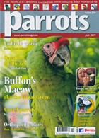 Parrots Magazine Issue JUL 19