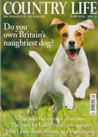 Country Life Magazine Issue 24/07/2019
