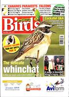 Cage And Aviary Birds Magazine Issue 03/07/2019
