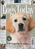 Dogs Today Magazine Issue SEP 19