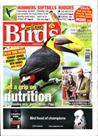 Cage And Aviary Birds Magazine Issue 10/07/2019