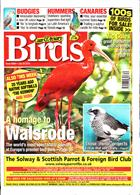 Cage And Aviary Birds Magazine Issue 24/07/2019