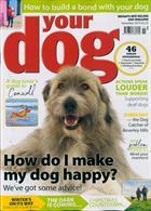 Your Dog Magazine Issue NOV 19