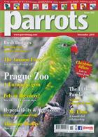 Parrots Magazine Issue NOV 19
