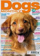 Dogs Monthly Magazine Issue NOV 19