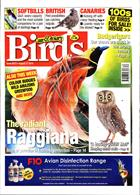 Cage And Aviary Birds Magazine Issue 21/08/2019