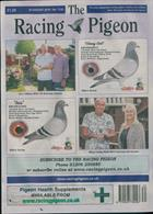 Racing Pigeon Magazine Issue 23/08/2019