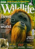 Bbc Wildlife Magazine Issue SEP 19