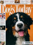 Dogs Today Magazine Issue NOV 19