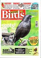 Cage And Aviary Birds Magazine Issue 04/09/2019
