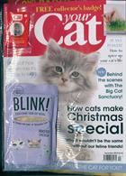 Your Cat Magazine Issue DEC 19