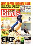 Cage And Aviary Birds Magazine Issue 11/09/2019