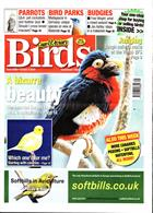 Cage And Aviary Birds Magazine Issue 09/10/2019