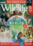 Bbc Wildlife Magazine Issue NOV 19