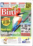 Cage And Aviary Birds Magazine Issue 30/10/2019