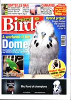 Cage And Aviary Birds Magazine Issue 06/11/2019