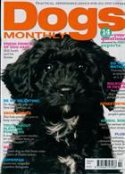 Dogs Monthly Magazine Issue FEB 20