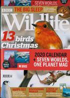 Bbc Wildlife Magazine Issue DEC 19