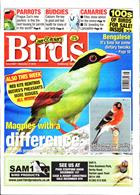 Cage And Aviary Birds Magazine Issue 27/11/2019