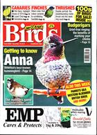 Cage And Aviary Birds Magazine Issue 18/12/2019