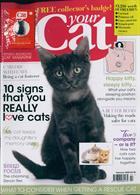 Your Cat Magazine Issue FEB 20