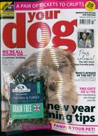 Your Dog Magazine Issue FEB 20
