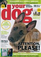 Your Dog Magazine Issue MAR 20
