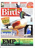 Cage And Aviary Birds Magazine Issue 08/01/2020