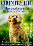Country Life Magazine Issue 04/03/2020
