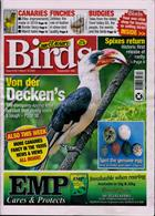 Cage And Aviary Birds Magazine Issue 18/03/2020