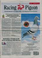 Racing Pigeon Magazine Issue 13/03/2020