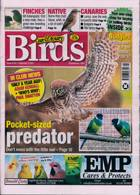 Cage And Aviary Birds Magazine Issue 29/01/2020