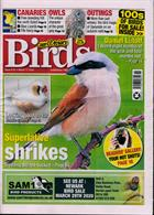 Cage And Aviary Birds Magazine Issue 11/03/2020