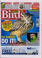 Cage And Aviary Birds Magazine Issue 26/02/2020