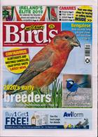 Cage And Aviary Birds Magazine Issue 25/03/2020