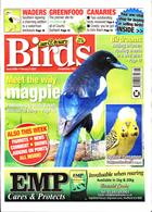 Cage And Aviary Birds Magazine Issue 05/02/2020