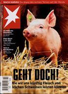 Stern Magazine Issue NO 10