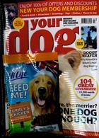 Your Dog Magazine Issue APR 20