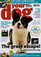 Your Dog Magazine Issue MAY 20