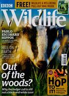 Bbc Wildlife Magazine Issue SPRING