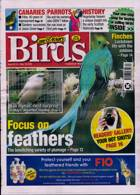 Cage And Aviary Birds Magazine Issue 13/05/2020