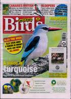 Cage And Aviary Birds Magazine Issue 27/05/2020