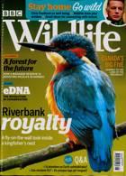 Bbc Wildlife Magazine Issue MAY 20