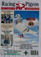 Racing Pigeon Magazine Issue 17/04/2020