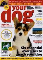 Your Dog Magazine Issue JUL 20