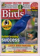Cage And Aviary Birds Magazine Issue 10/06/2020