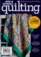 American Patchwork Quilting Magazine Issue NO 165