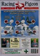 Racing Pigeon Magazine Issue 19/06/2020
