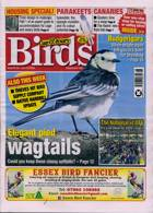 Cage And Aviary Birds Magazine Issue 24/06/2020